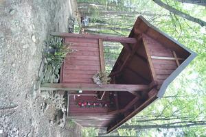 Drewniana kapliczka przy czarnym szlaku z Rzyk Praciaków na Potrójną, koło Czarnego Gronia, fot. D. Rusin